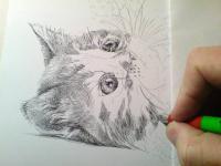 Začátek kresby