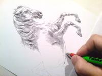 Šachová figurka - kůň, šachy, perokresba