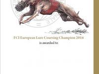 Návrh na Diplom - mezinárodní závody