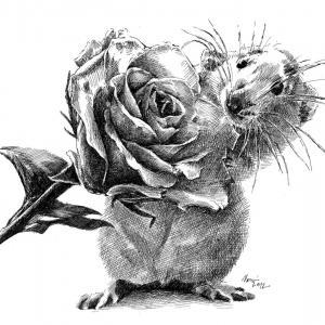 Myška zahradník