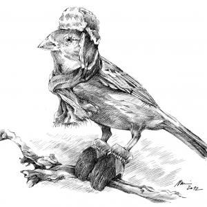 Vrabec v zimě