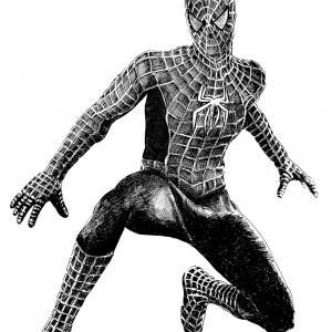 Spider-man, Sokolské šibřinky, komix