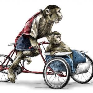 Opice na výletě