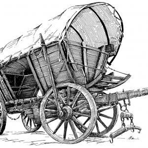 Koňský vůz