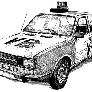Škoda 105 S - Veřejná bezpečnost