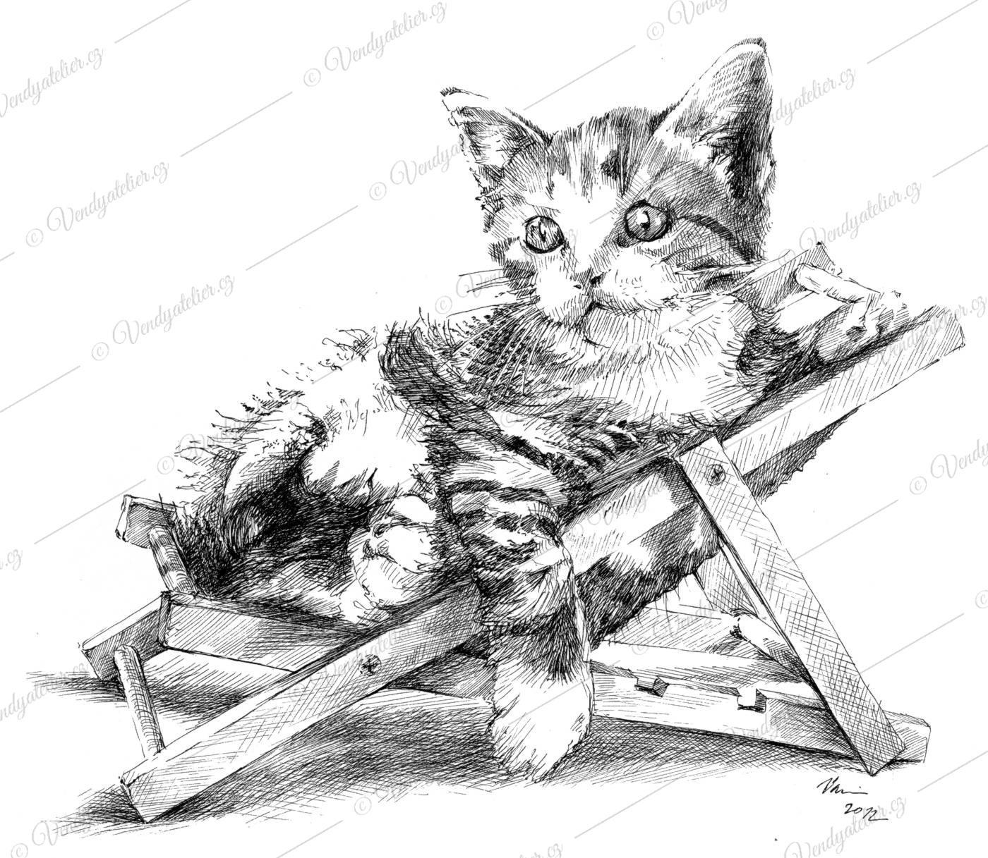 Výsledek obrázku pro odpočívající kočky