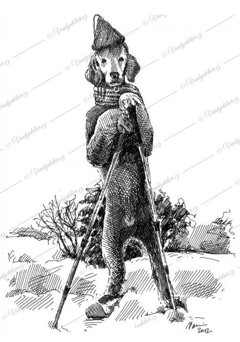 Pes na lyžích, pes lyžař