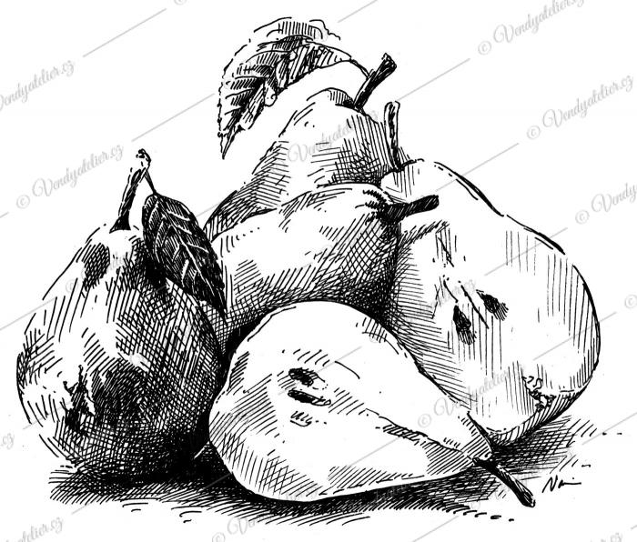 Hrušky