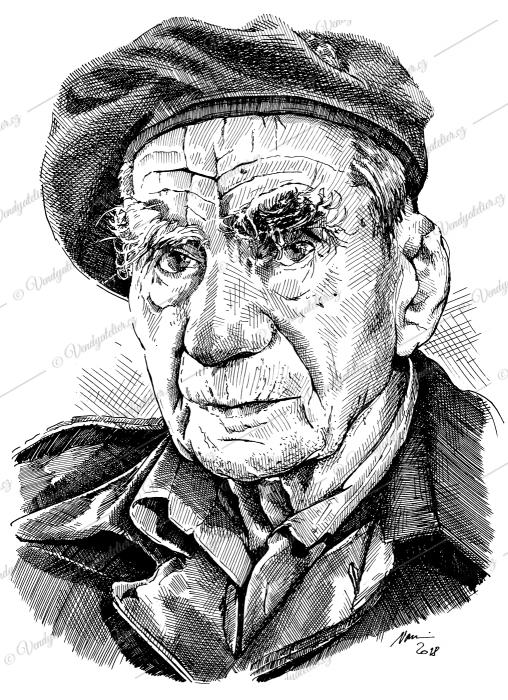Viktor Wellemín