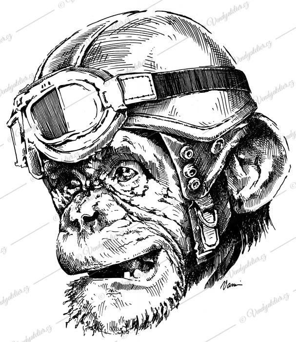 Motorkář opičák