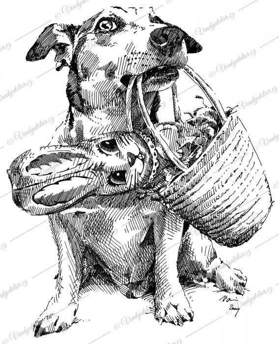 velikonoční pes koledník ;)