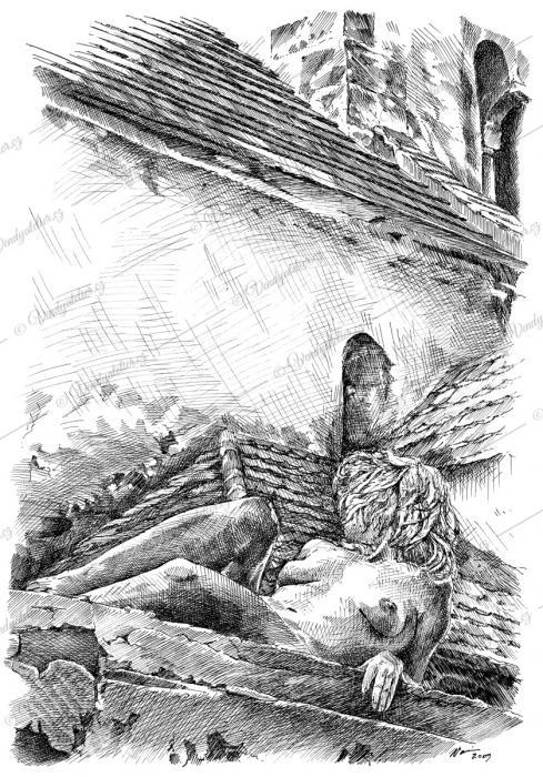 Akt - kočka na střeše