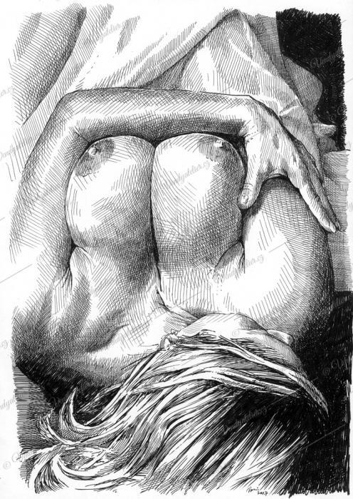 Akt - perokresba
