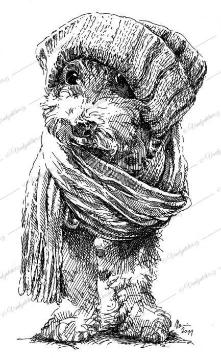 Pes - zimní výbava