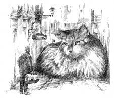 Kočka na ulici