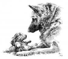 Pes a štěně